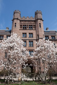 Beautiful buildings and trees at Yale